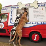 dogs at food truck