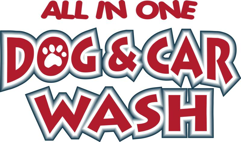 Dog and car wah