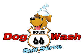 Dogs get washed and shined at self-service dog washes.
